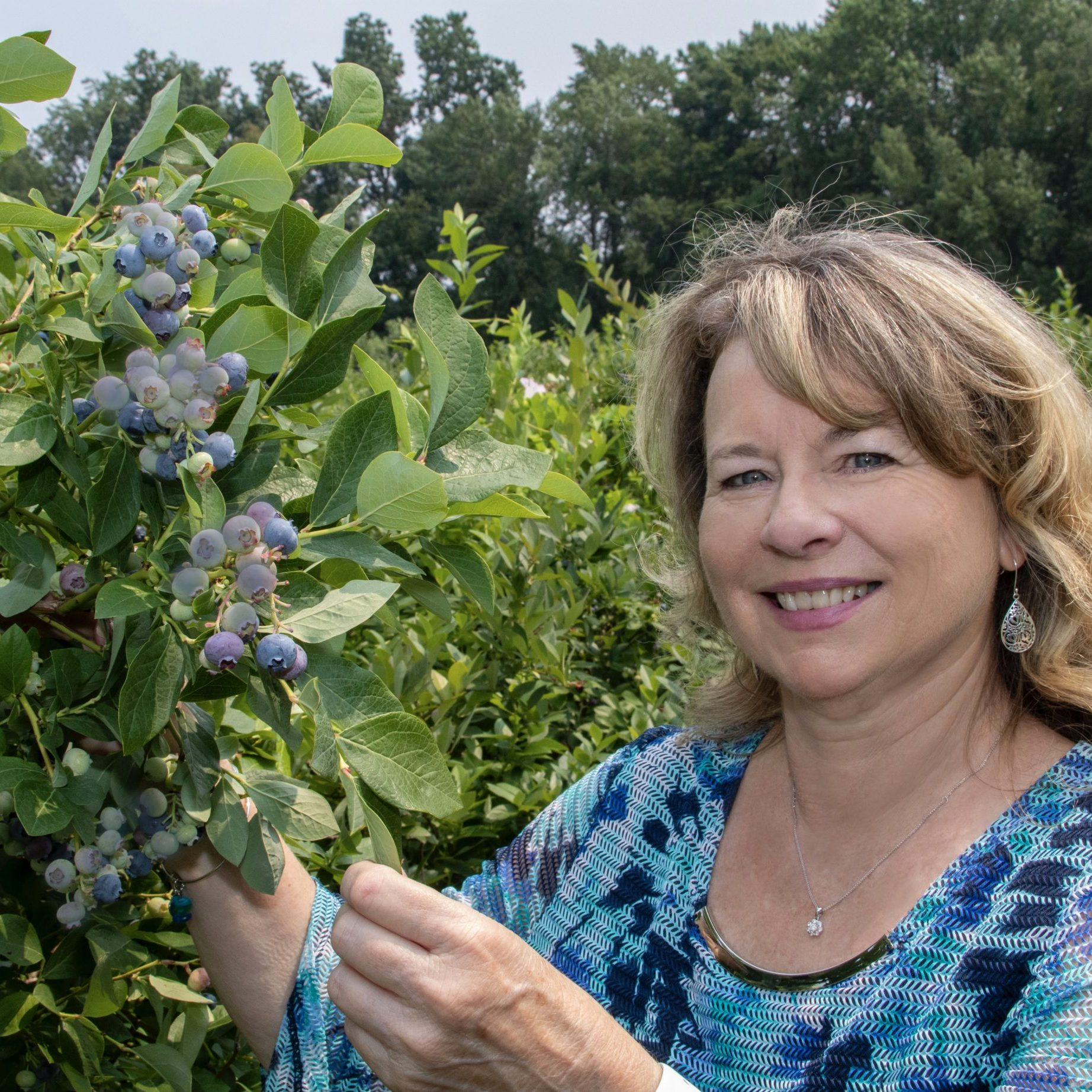 konnie-at-blueberry-field